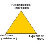 Complejidad de la sexualidad humana 2